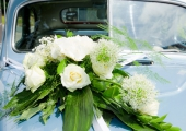 Hochzeit-Pihl Foto Ramon-Wachholz IMG 4557