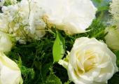 Hochzeit-Pihl Foto Ramon-Wachholz IMG 4558